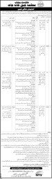 Government Of The Punjab Prison Department NTS Entry Test Result 2017