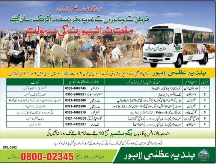 eid ul azha animals for sale In Lahore