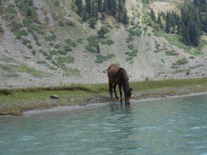 Mahodand Lake Kalam Swat Valley Pakistan In Winter, Summer Images