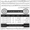Hunarmand Pakistan Program 2017 Prime Minsiter Free Admission Free Courses