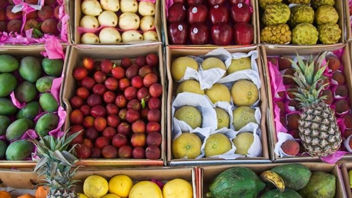 Fresh Fruits import