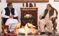 Prime Minister Shahid Khaqan Abbasi met PML-N Quaid Nawaz Sharif