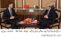 A Chinese delegation called on Punjab Chief Minister
