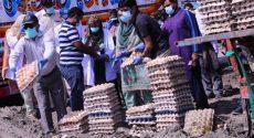 PFA destroyed 130,000 million rotten eggs