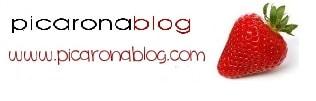 PicaBlog