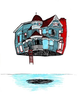 house flying in the air