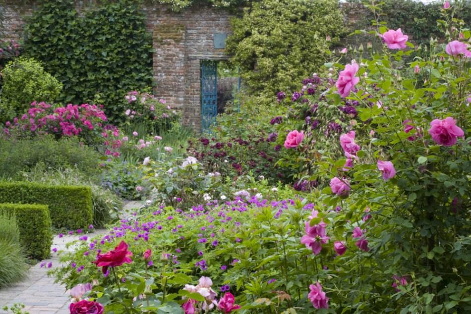 The Rose Garden in June at Sissinghurst Castle Garden, near Cranbrook, Kent