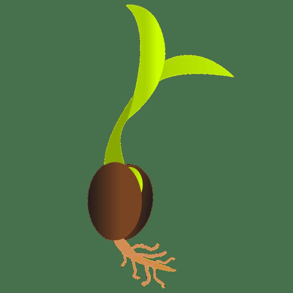 20171026F pixabay