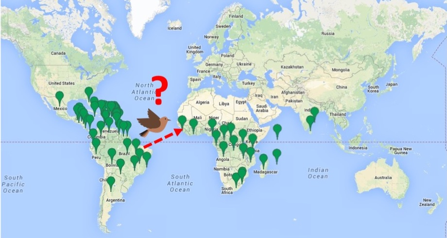 20181203F IUCN Red List, Google Maps & www.clipartly.com.jpg