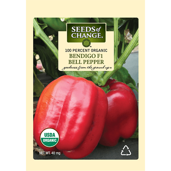 Seed pack, red bell pepper Bendigo, organic