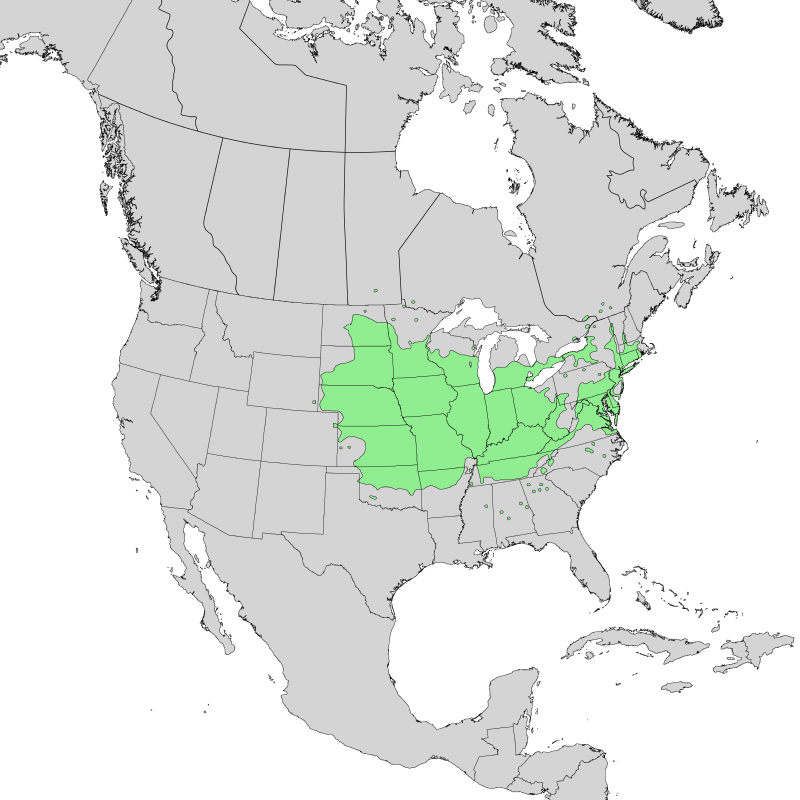 Hackberry tree natural distribution map.