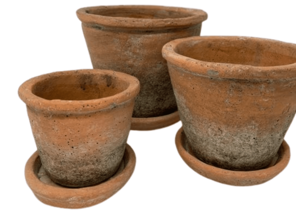 Terra cotta pots with assorted saucers