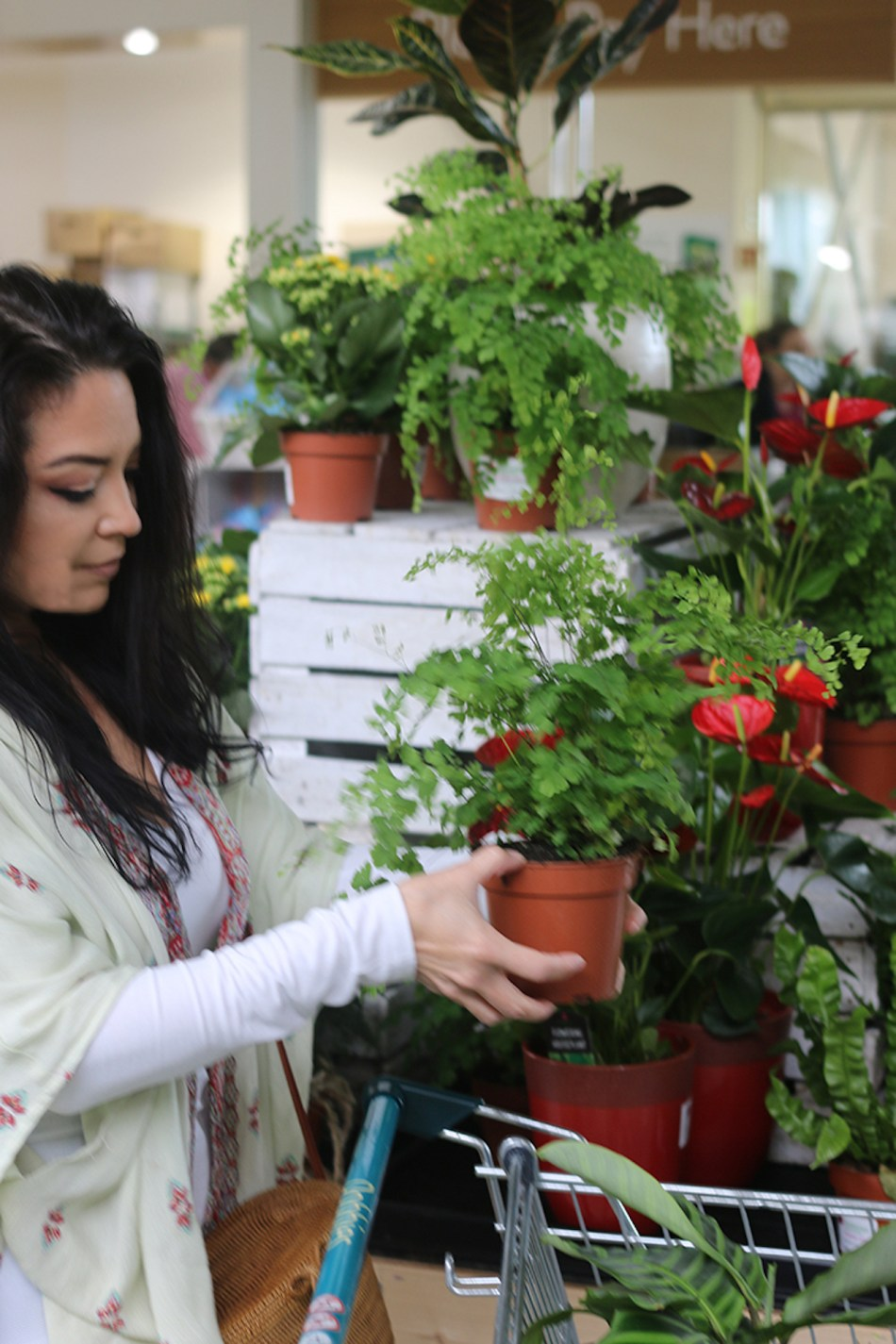 Woman shopping for a houseplant in a nursery.