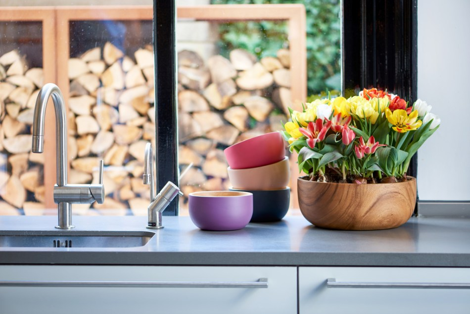 Pot of short tulips in mixed colors on a kitchen counter.