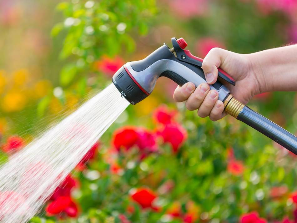Hose with nozzles spraying water.