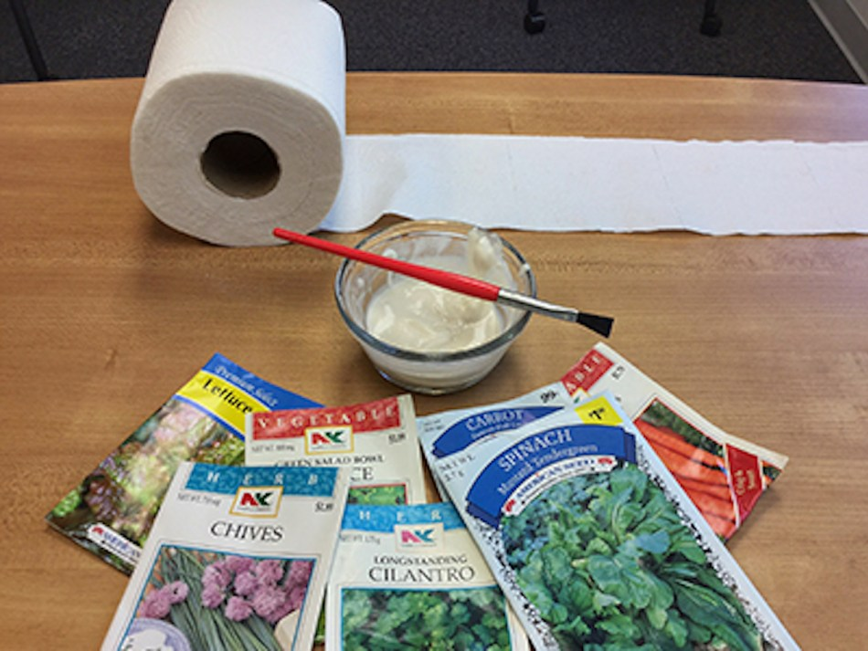 Set up for seed tape manufacture: toilet paper, home-made glue, brush, seed packs.