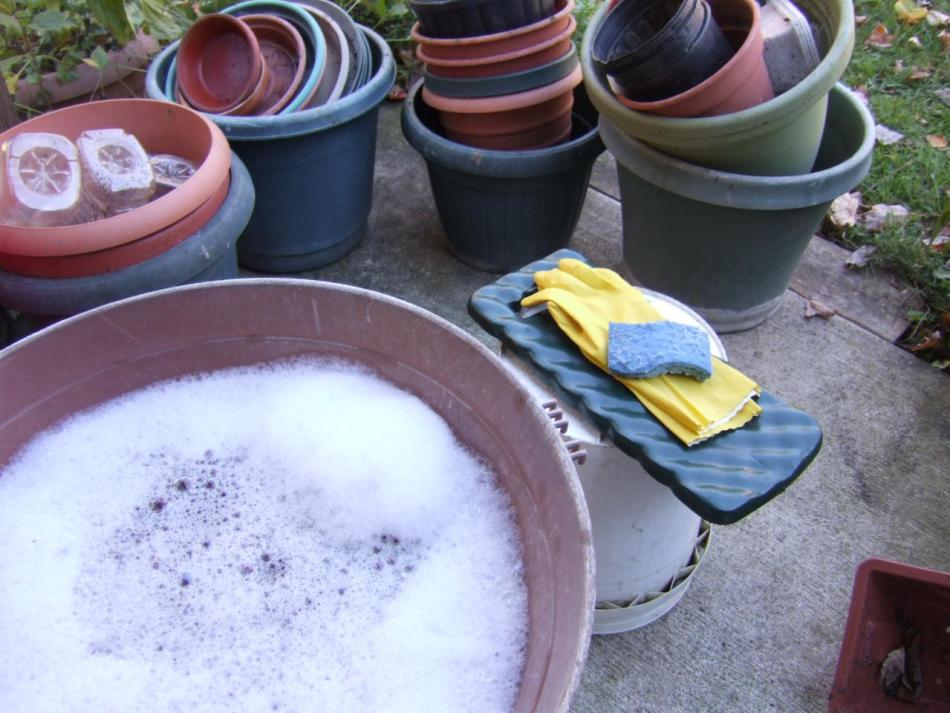 Hand washing flower pots.