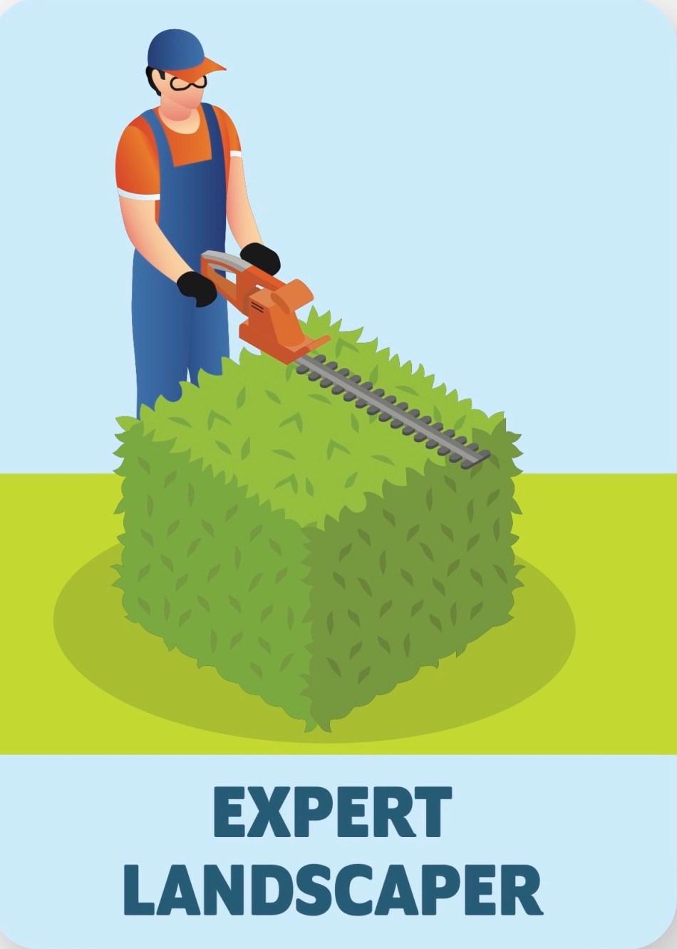 Illustration of expert landscaper