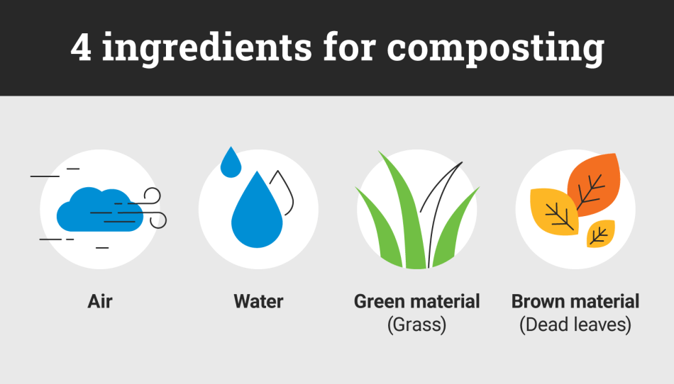 Illustration showing 4 main ingredients for composting