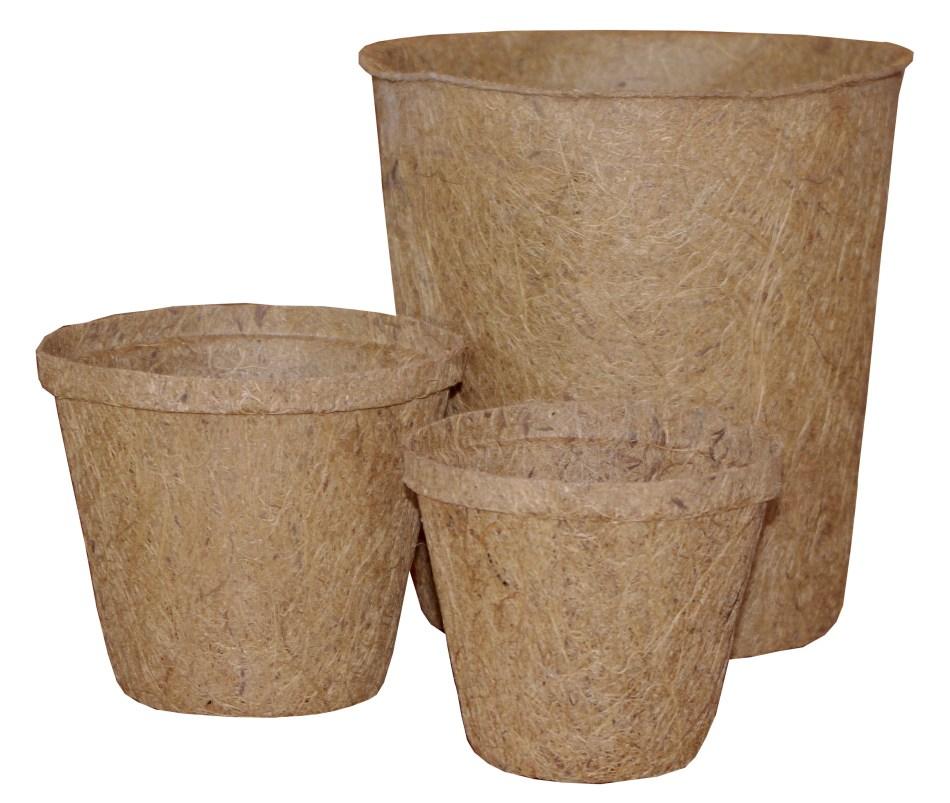 Three coco pots