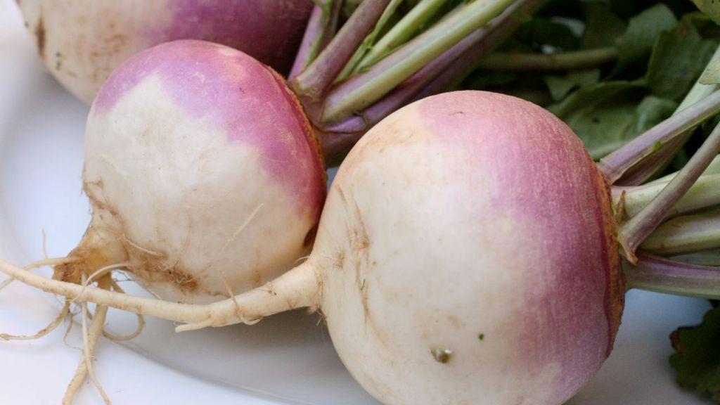 Purple and white turnips.