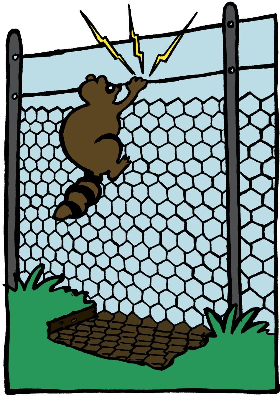 Electric raccoon fence.