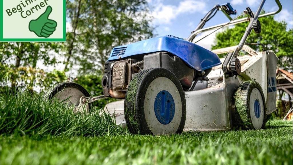 Lawn mower on lawn