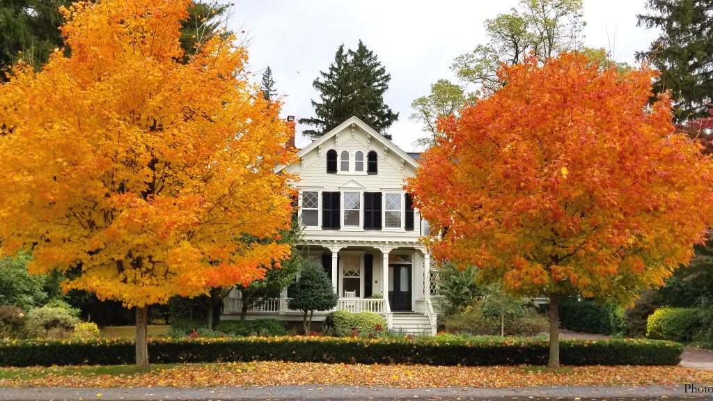 Suburban house in the fall with trees with colored leaves.
