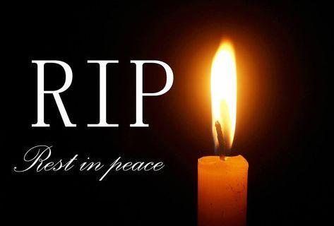Scott Jarred Cohen death