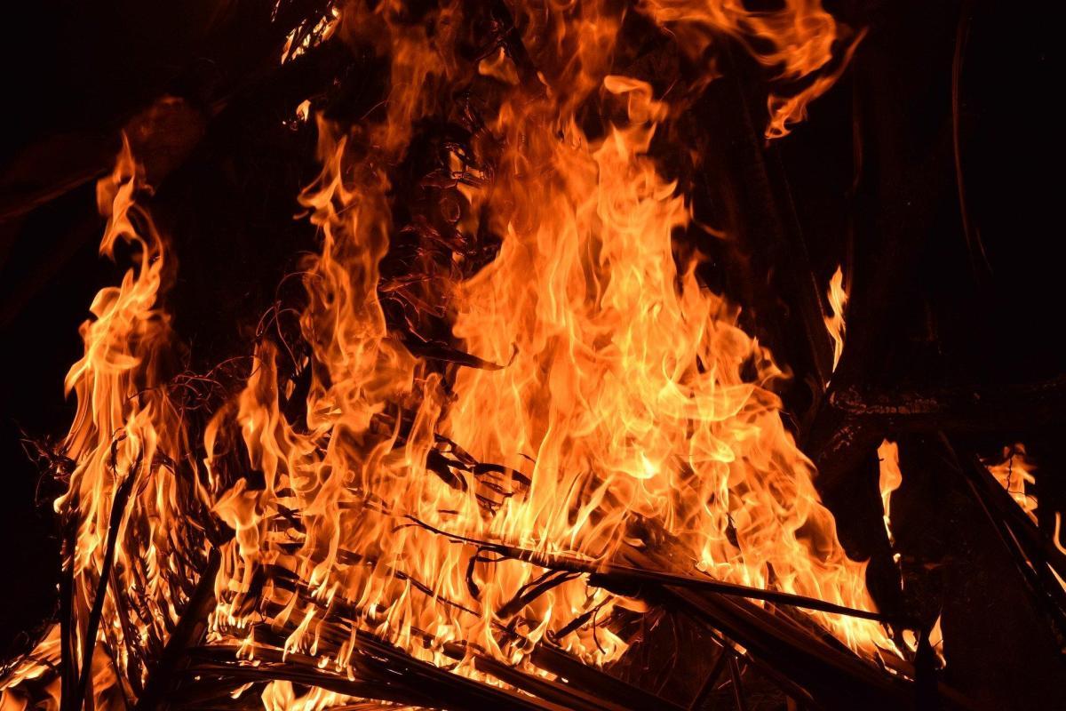 foto fuego llamas arden