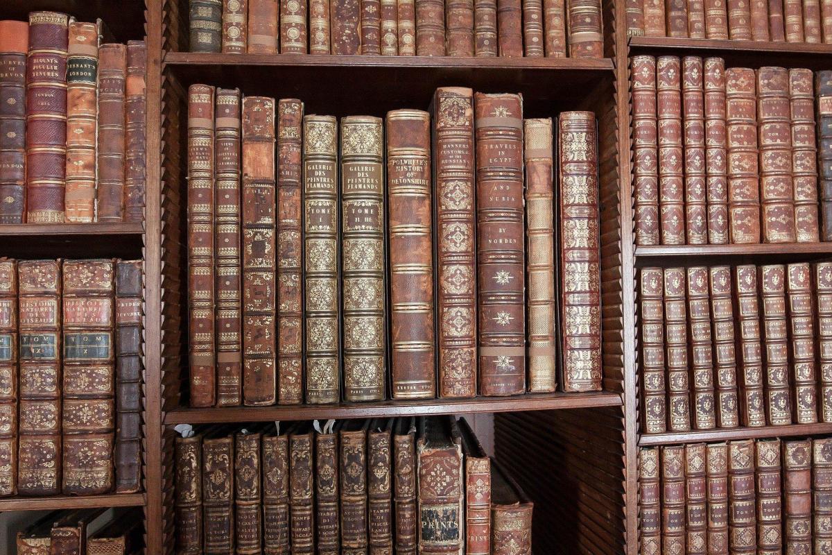 biblioteca libros estantes