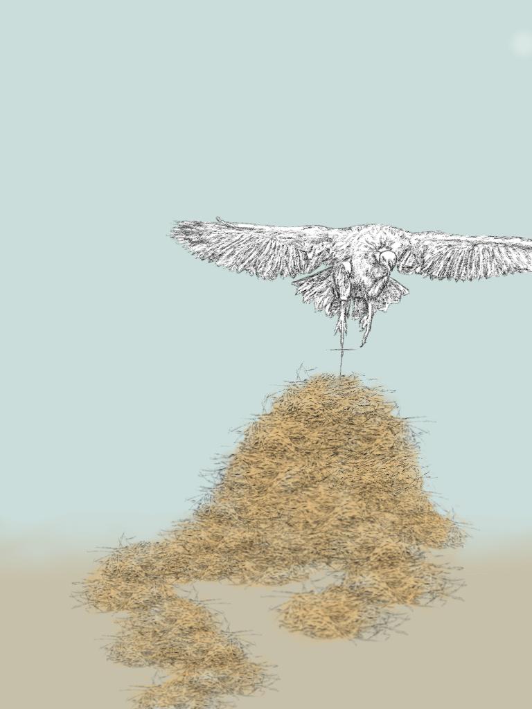 balance ilustracion juliana