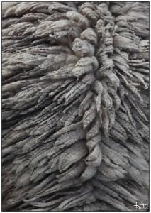 Laines Paysannes toison de bélier tarasconnais