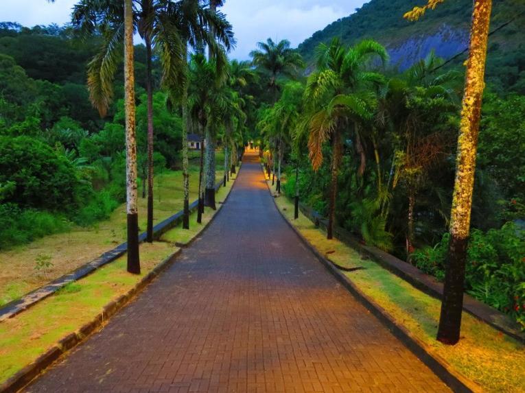 Horto Florestal Santos Lima