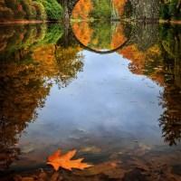 Lausitz: Herbst in Kromlau