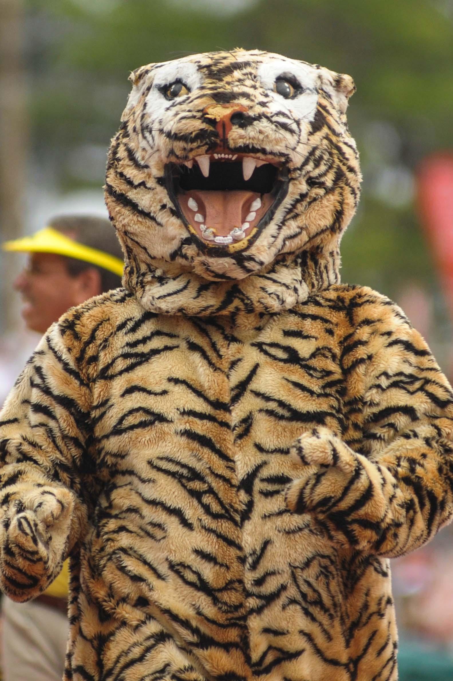 Mascotas Tigres Interamericana