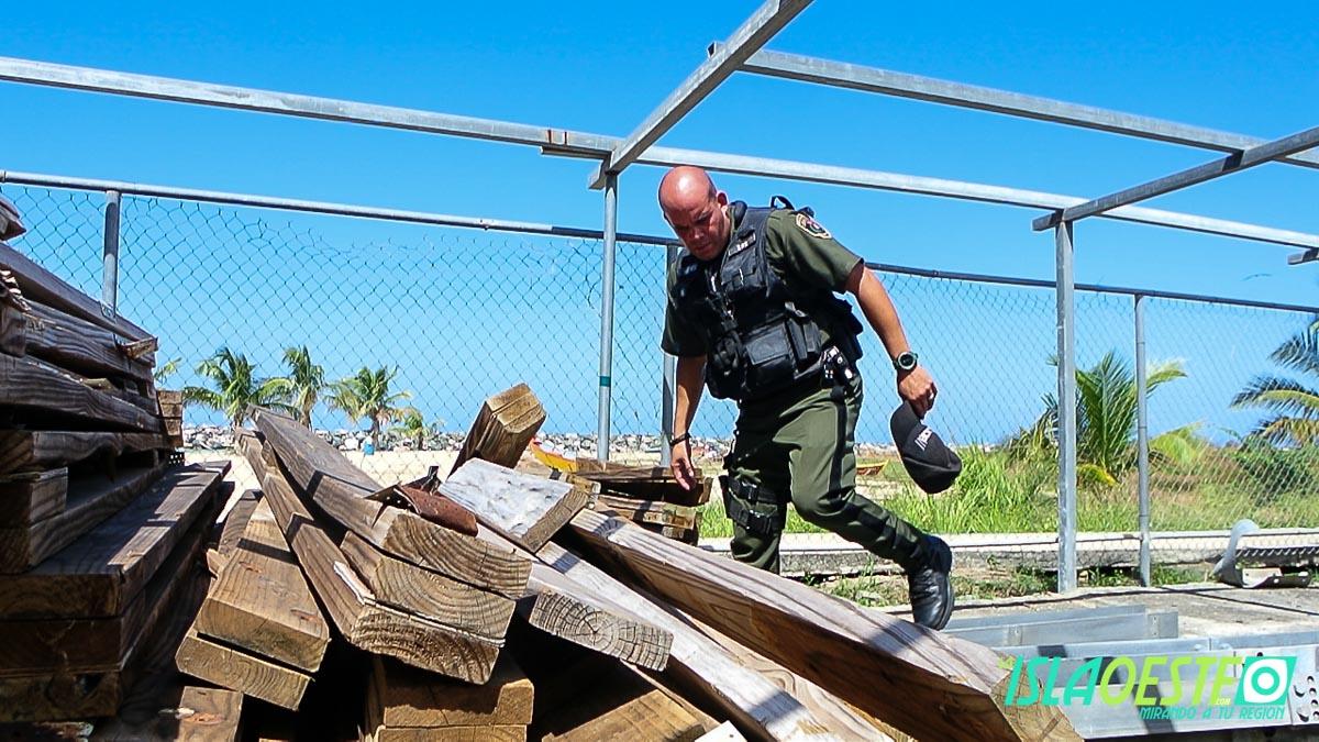 Policía Municipal de Aguadilla sobrevive a picada de araña viuda 3183
