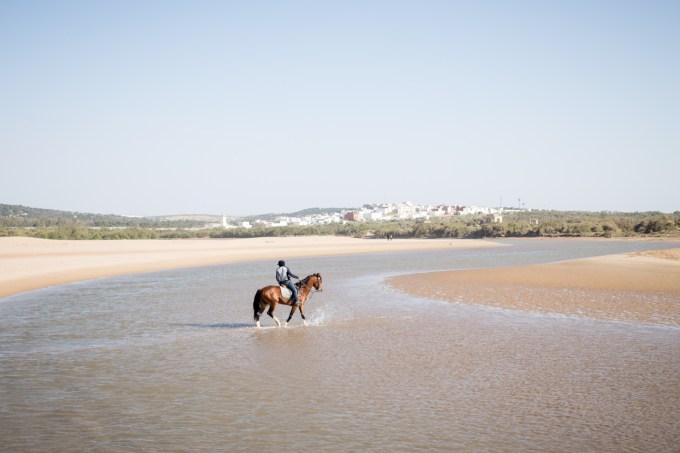 Essaouira plage cheval