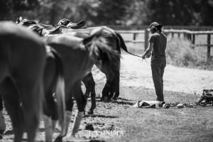 POLO-SCHOCKEMOEHLE-DIAMON-TROPHY-18-JULY-1-FOTO-LAJINETA-SASKIAMARLOH-75