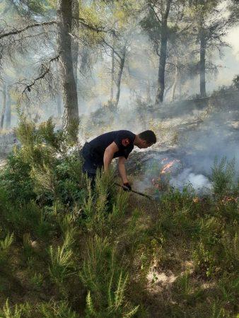 FOTO/ Përfshihet nga zjarri pylli i Gjorgozit në Patos