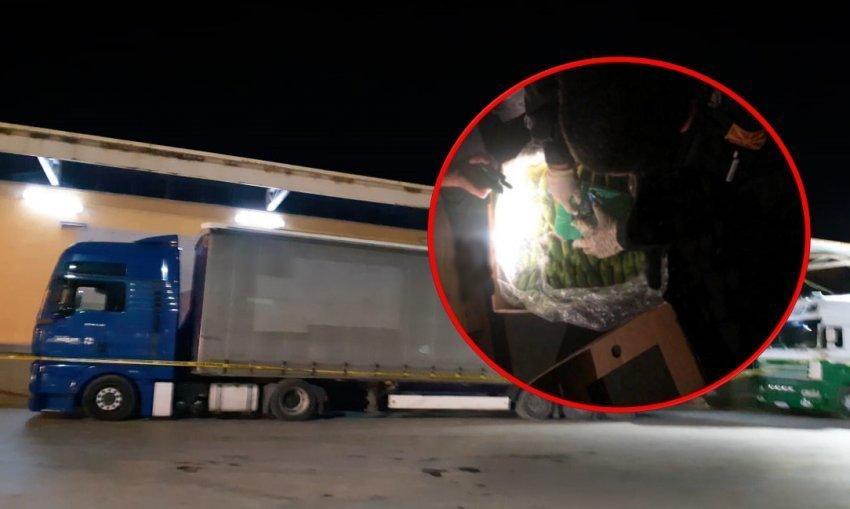 Kapet 7 kg kokainë/ Ngarkesa e 4 në kontenierët e kompanisë së bananeve brenda një muaji