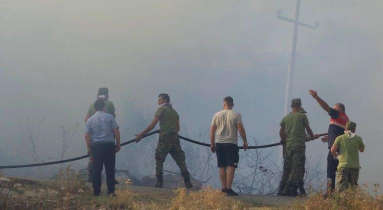 VOA për zjarret në vend: Krimet mjedisore mbeten të pandëshkuara në Shqipëri