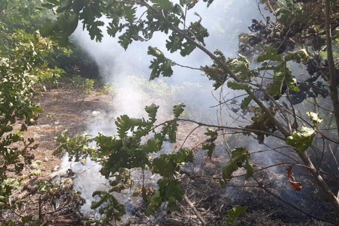 Shfaqet një vatër zjarri edhe në Kolonjë