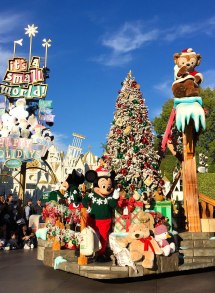 Reasons Visit Disneyland Resort Holidays