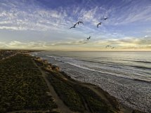 Carlsbad Travel Guide - La Jolla Mom