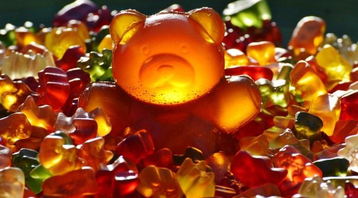 giant-rubber-bear-1089618_1280