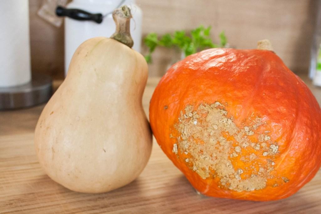 COOK – 2 köstliche Rezepte mit Kürbis Püree