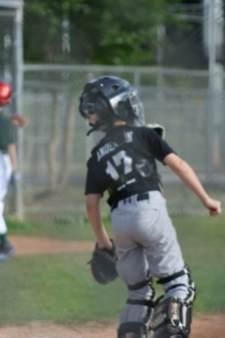 cia_baseball201317