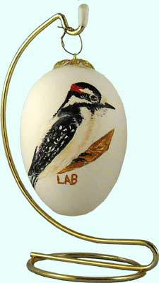 Woodpecker Painting on Egg