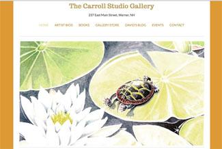 David M. Carroll Website